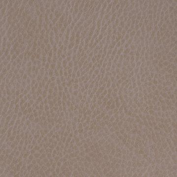 Faux Leather Border Latte